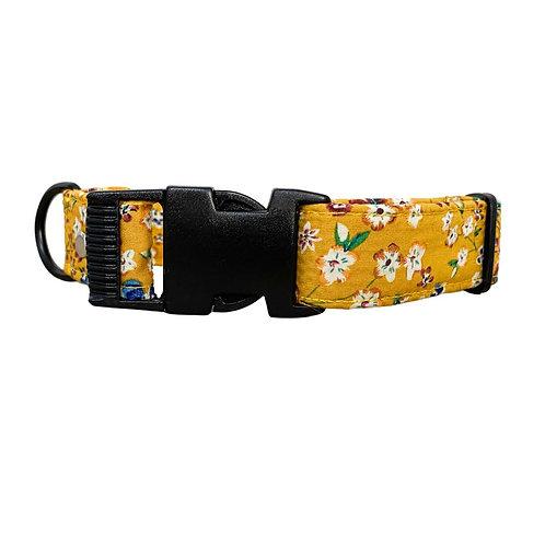 Marigold Collar