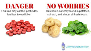 Warning: 99% of Iron Supplements are not the Iron found in food.