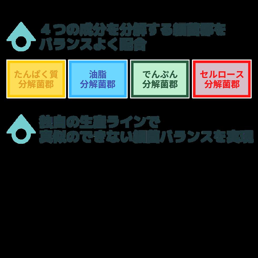 新LP用 (2).png