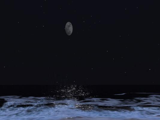 Full moon brings out the loonies!