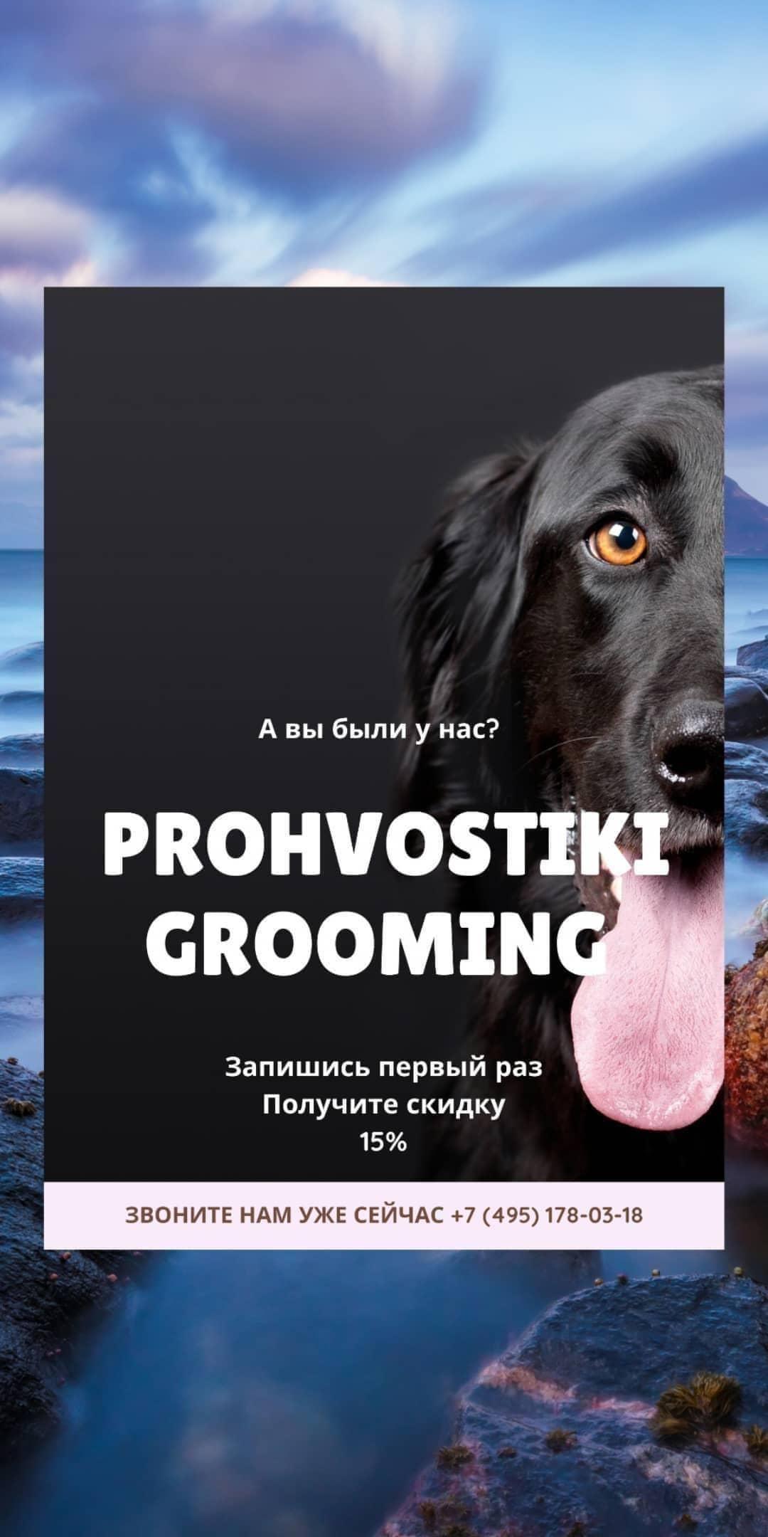 angelskui_prohvostiki_grooming