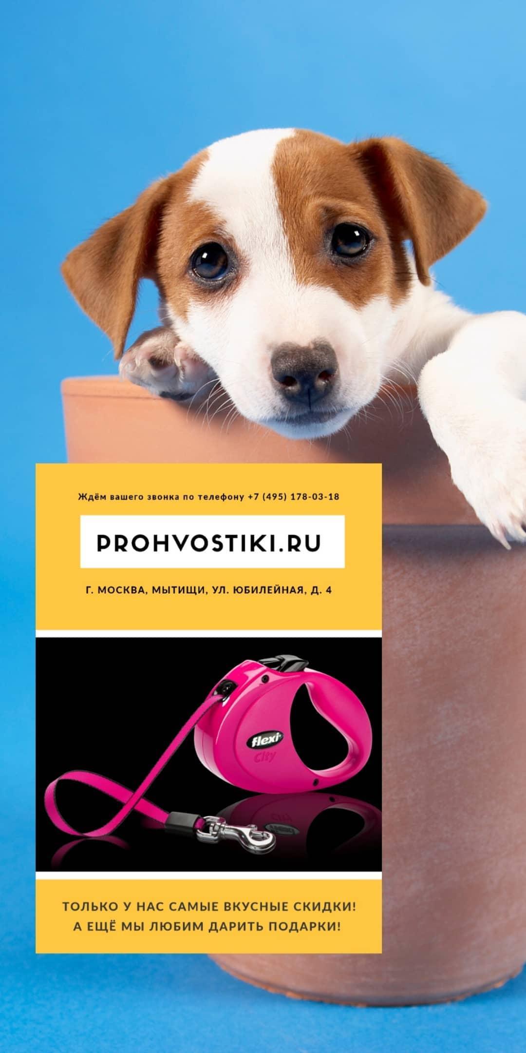 angelskui_prohvostiki
