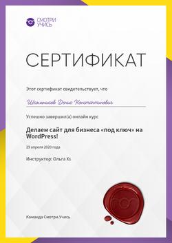 Сертификат о прохождении курса Делаем са