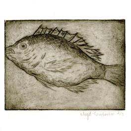 Fish, 2016