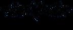 Logo_Swanny-shop.png