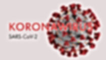corona 2.jpg