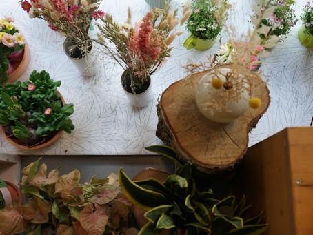 Balsamine : bien plus qu'une boutique de fleurs
