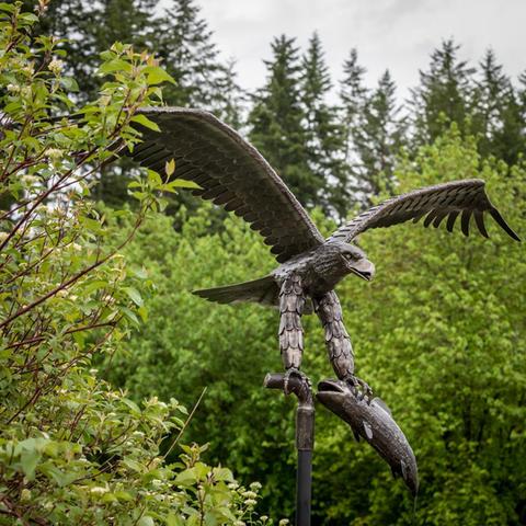Iron Eagle with Salmon