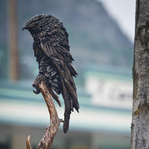 """Raven"" by Daniel Kloc (2011)"