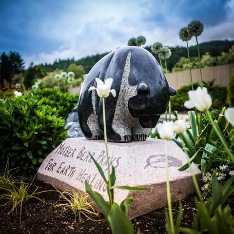 Mother Bear Prays for Earth Healing