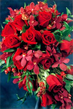 rosemakara