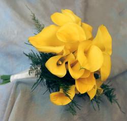yellowcalls1
