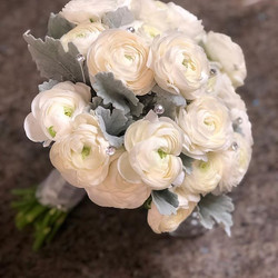 Beautiful white ranunculus and dusty mil