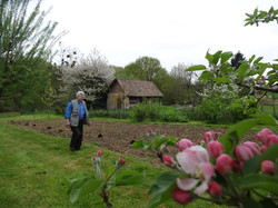 Plantation Mars 2013