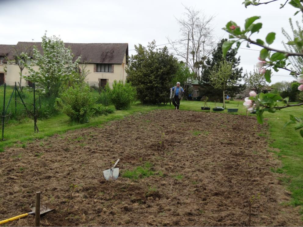 Plantation Mars 2013 03