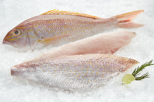 Snapper Fillet Goldband  - Frozen