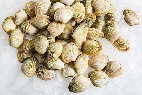 Vongole, Ready to Eat Vac Pack - Frozen (500g)