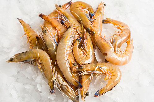 Small Green King Prawns