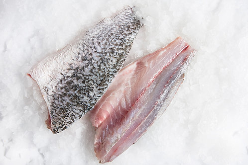 Frozen Barra Fillets - Large