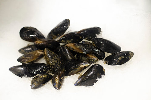 Mussels Fresh Victorian  (1kg)