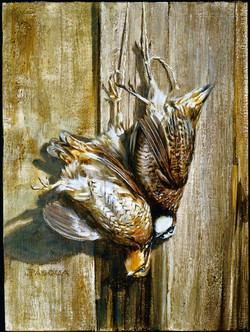 Feathers & Barnwood 9 x 12