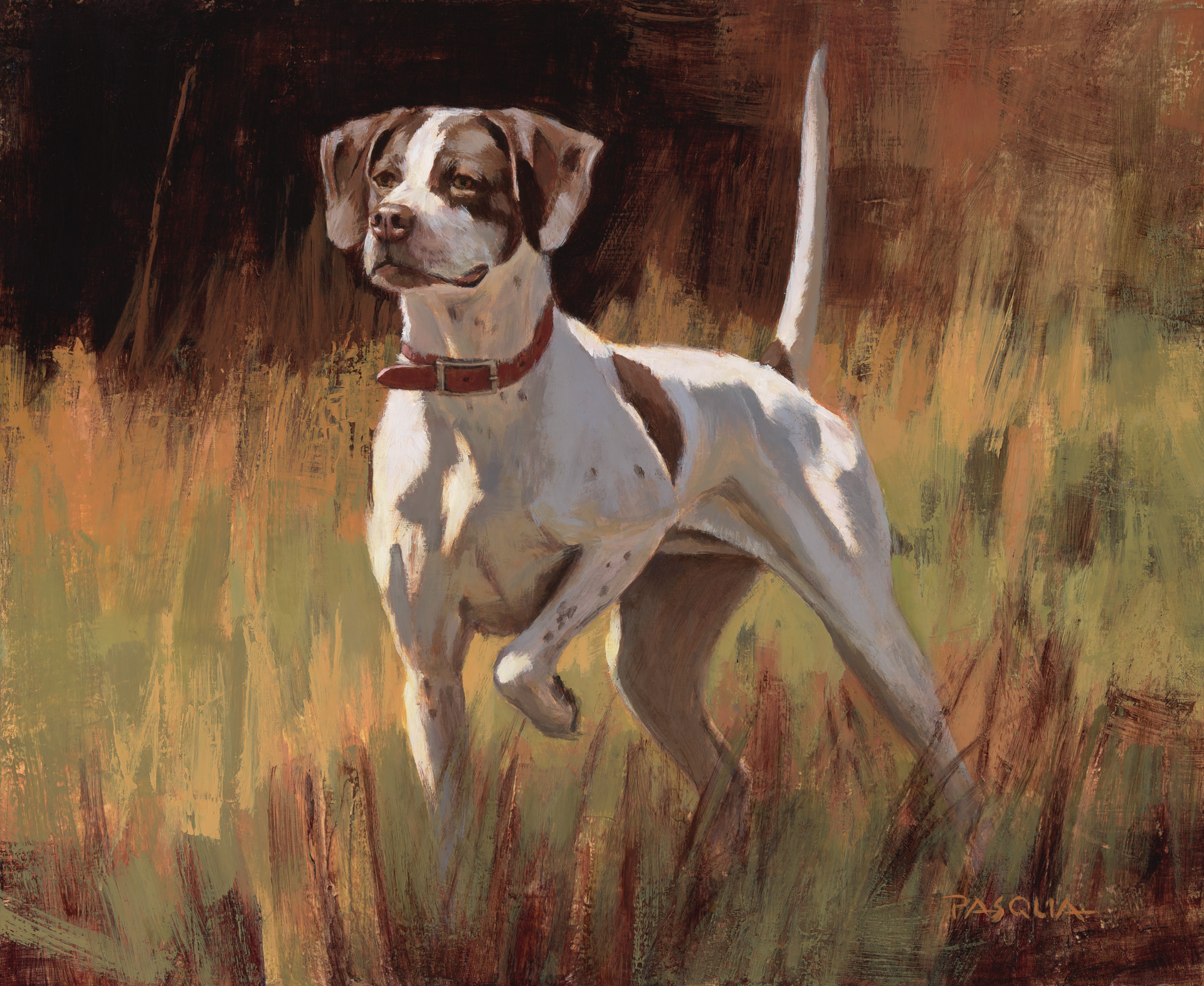 Pointer Perfect    13 x 16