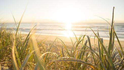 australia-beach-cereal-1089168.jpg