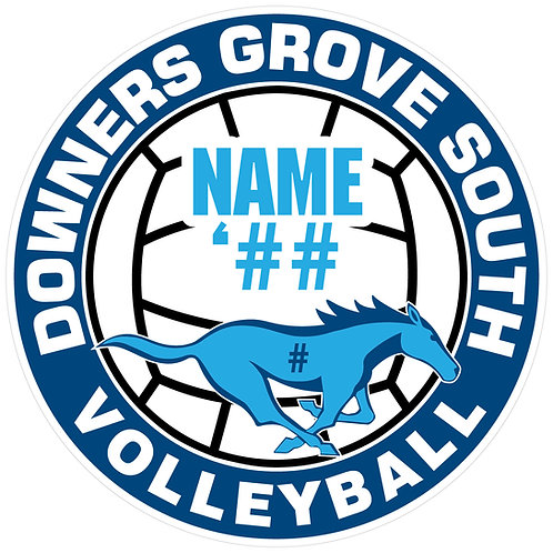 DGS Volleyball Sticker