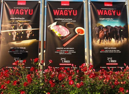 The 2017 Wagyu Conference