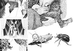 Mõningad illustratsioonid
