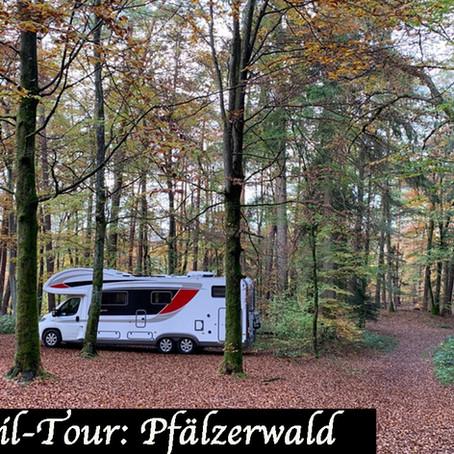 Feelfreeontour im Pfälzerwald - Urlaub daheim