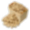 peanut SANS FOND.png