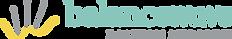 bw-logo_horizontal_colour.png
