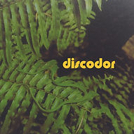 Discodor 2000px.jpg