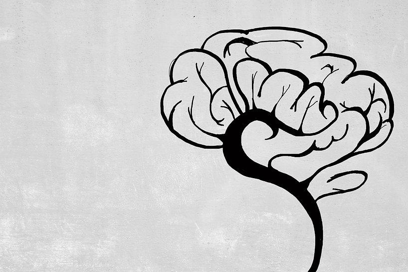 Creative brain sketch on concrete wall b