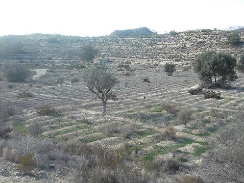 ref. 2059 Parcela rustica zona Partida de la cala Villajoyosa