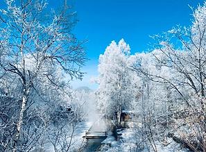 北海道の極寒の冬を楽しむデイキャンプツアー・モニター募集を開始