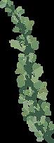 Greenery 14 c.png