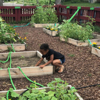 Youth Learning to Garden is Magic