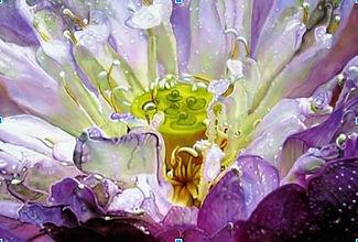 magnified flower painting, detailed floral original art, experimental floral artwork, lavender flower painting, northwest ohio artist, ohio fine art