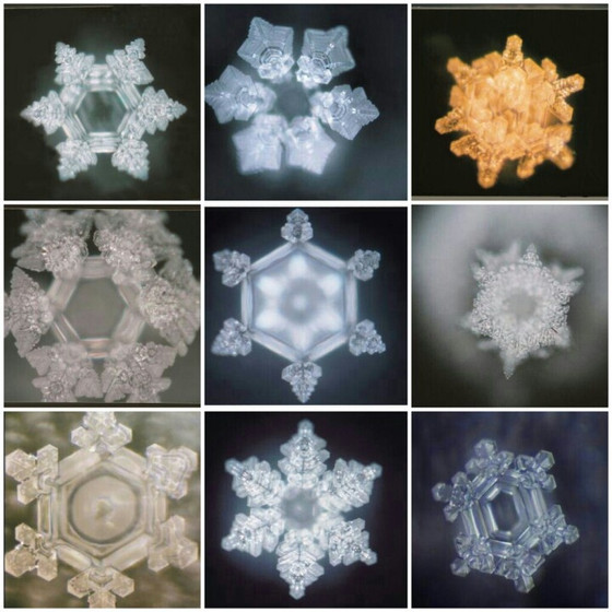 Book Review: The True Power of Water, By Masaru Emoto