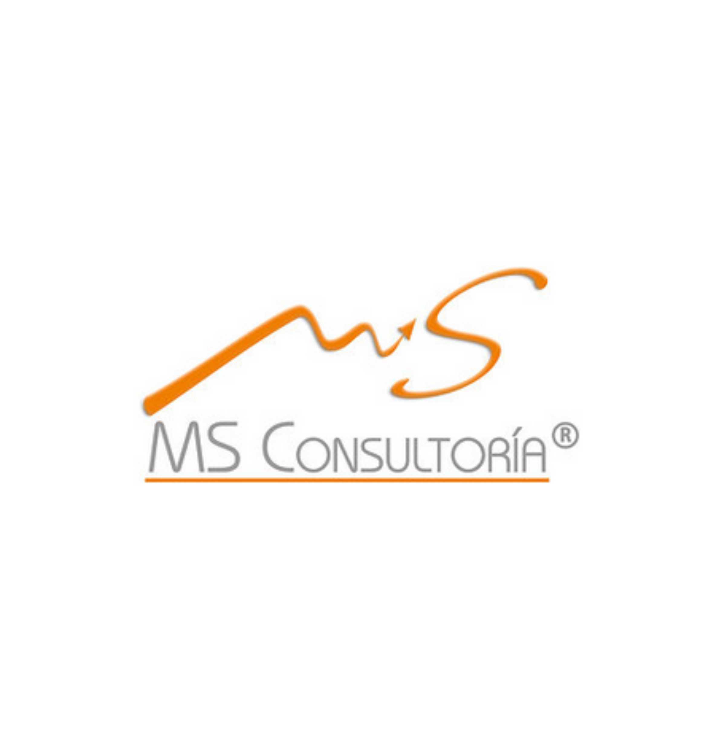 MS Consultoría