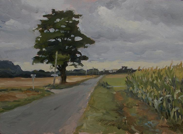 """""""Un arbre, sur la route de Coulon"""""""