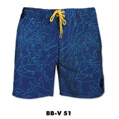 BB-V51.jpg