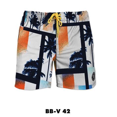 BB-V42.jpg
