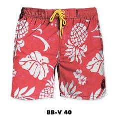 BB-V40.jpg