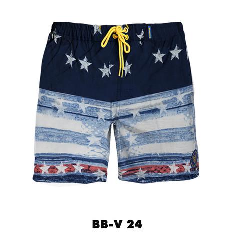 BB-V24.jpg