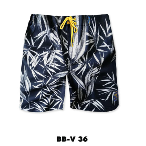 BB-V36.jpg