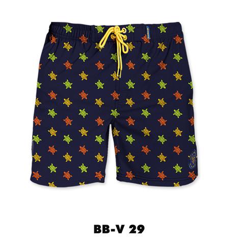 BB-V29.jpg