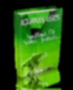 Système de soins avancés pour iguanes verts | Cybelplace